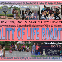 logo 2014 roadtrip